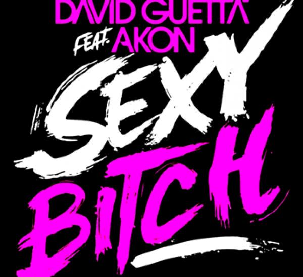David Guetta feat Akon<br><span>Sexy Bitch</span>