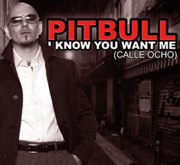 Pitbull<br><span>I Know You Want Me (Calle Ocho)</span>