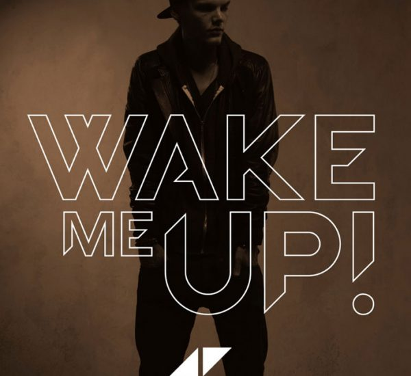 Avicii <br><span>Wake Me Up (Stem Editing)</span>
